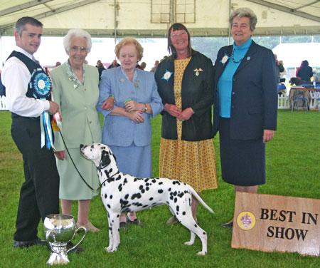 Paignton Championship Dog